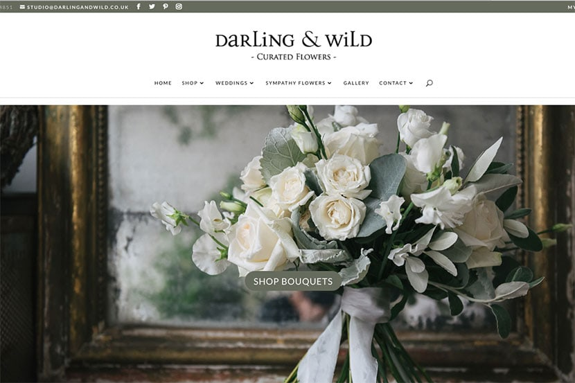Veloweb Website Design Portfolio